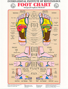 foot_reflexology_wall_chart